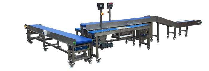 modular plastic conveyor belt packing station